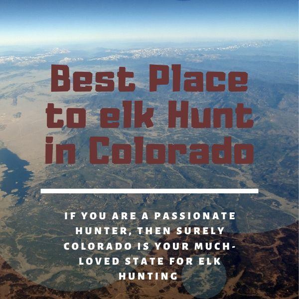 best place to elk hunt in colorado