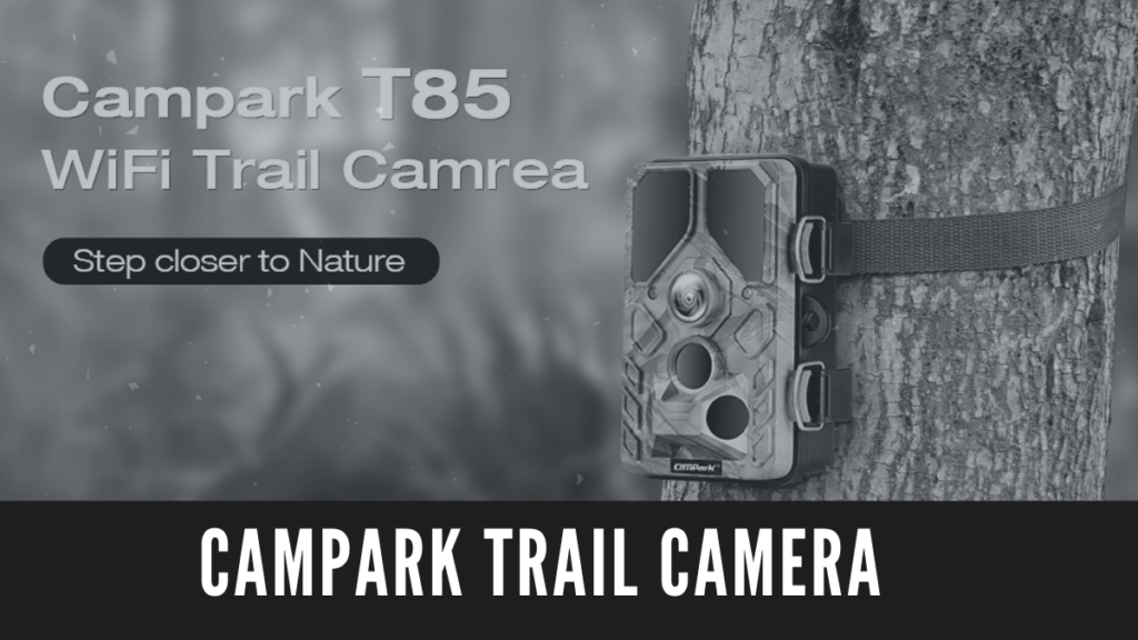 Campark Trail Camera Review